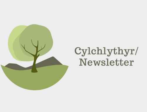 Gwaith Cartref Cyfnod Cynradd / Primary Phase Homework